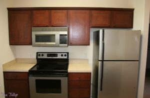 Kitchen Interior of Ironwood Court with stove, microwave and fridge